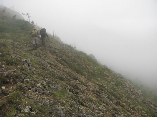 climbing-into-fog